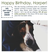 Happy Birthday, Harper!